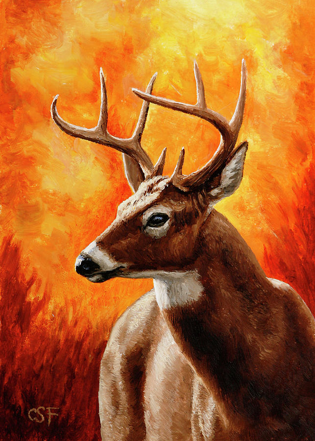 Deer Painting - Whitetail Buck Portrait by Crista Forest