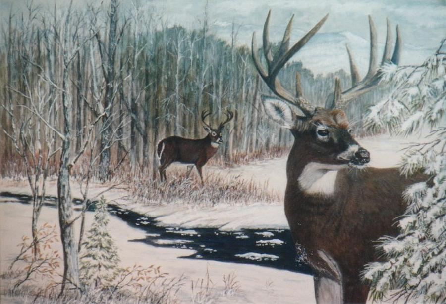 Whitetail Deer Painting by Ben Kiger