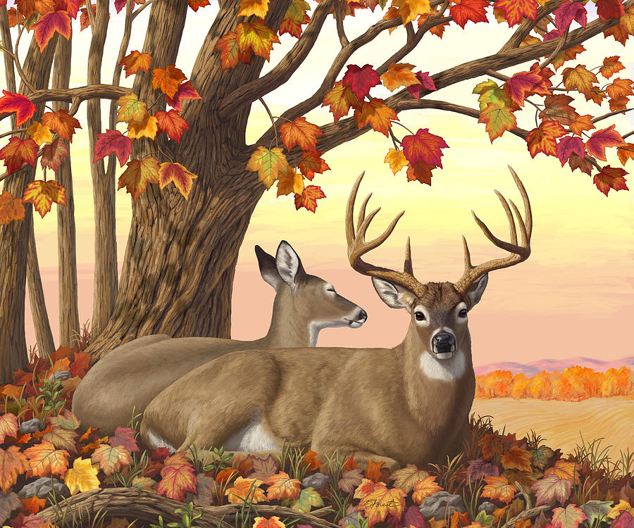 Deer Painting - Whitetail Deer - Hilltop Retreat Horizontal by Crista Forest
