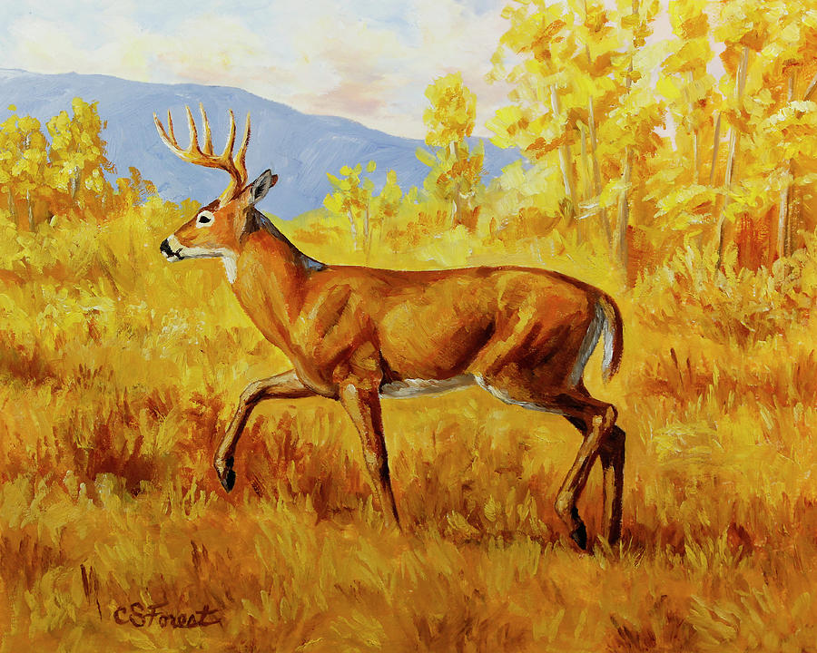 Deer Painting - Whitetail Deer In Aspen Woods by Crista Forest