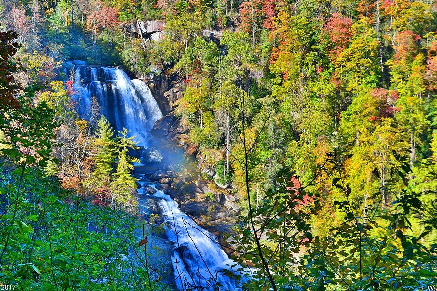 Whitewater Falls Photograph - Whitewater Falls North Carolina by Lisa Wooten
