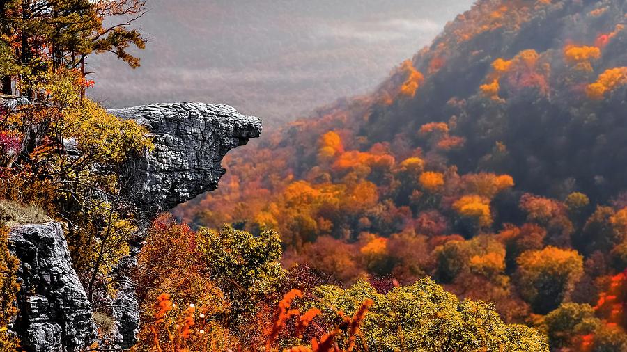 Arkansas Photograph - Whitiker Point by Garett Gabriel