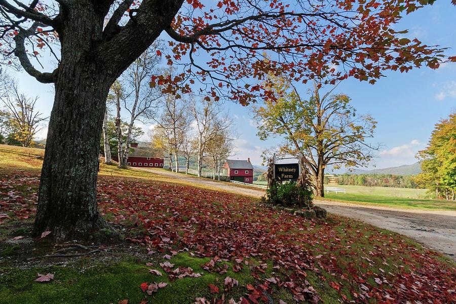 Landscape Photograph - Whitney Farm by Brett Pelletier