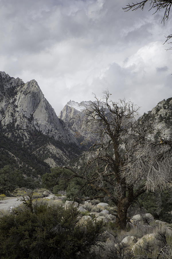 Whitney Portal by Dusty Wynne