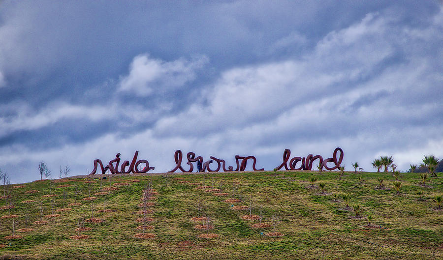 Wide Photograph - Wide Brown Land - Canberra - Australia by Steven Ralser