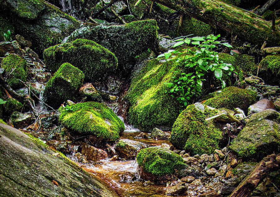 Wigwam Falls Hdr Photograph