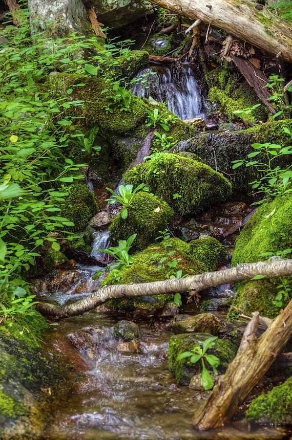 Wigwam Falls II Photograph
