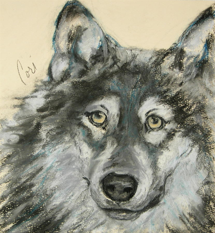 Wolf Drawing - Wild At Heart by Cori Solomon