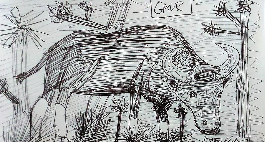 Gaur Drawing - Wild Gaur by Andrew Blitman