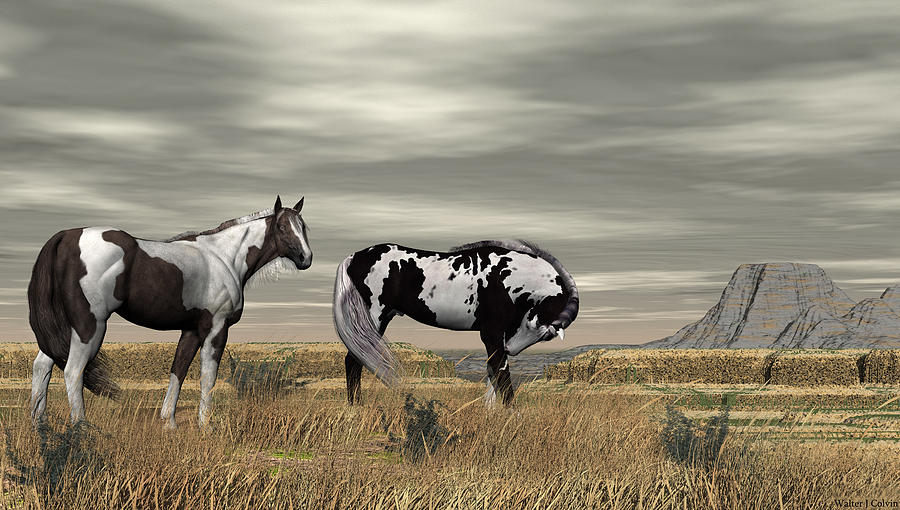 Wild Horses Digital Art by Walter Colvin
