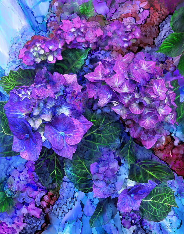 Carol Cavalaris Mixed Media - Wild Hydrangeas by Carol Cavalaris