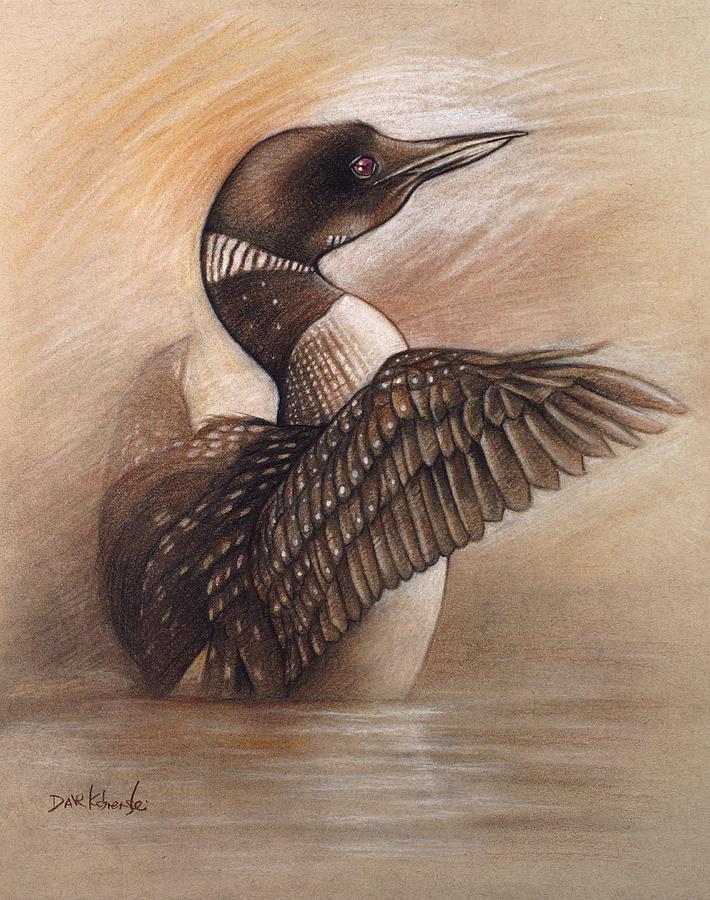 wild loon wildlife drawing drawing by dave kobrenski