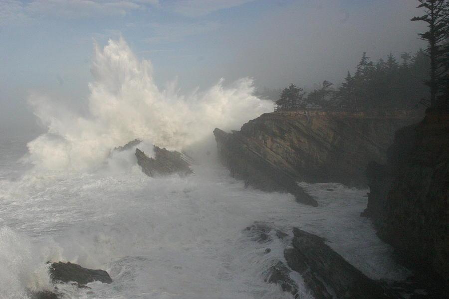 Oregon Photograph - Wild Oregon Coast by James Thompson