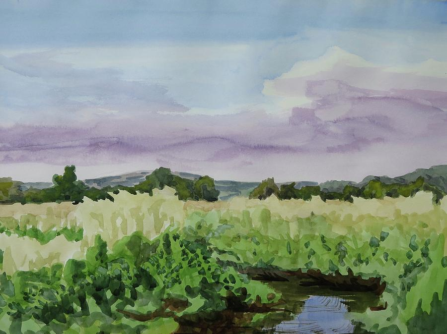 Chesapeake Bay Painting - Wild Rice Field by Bethany Lee