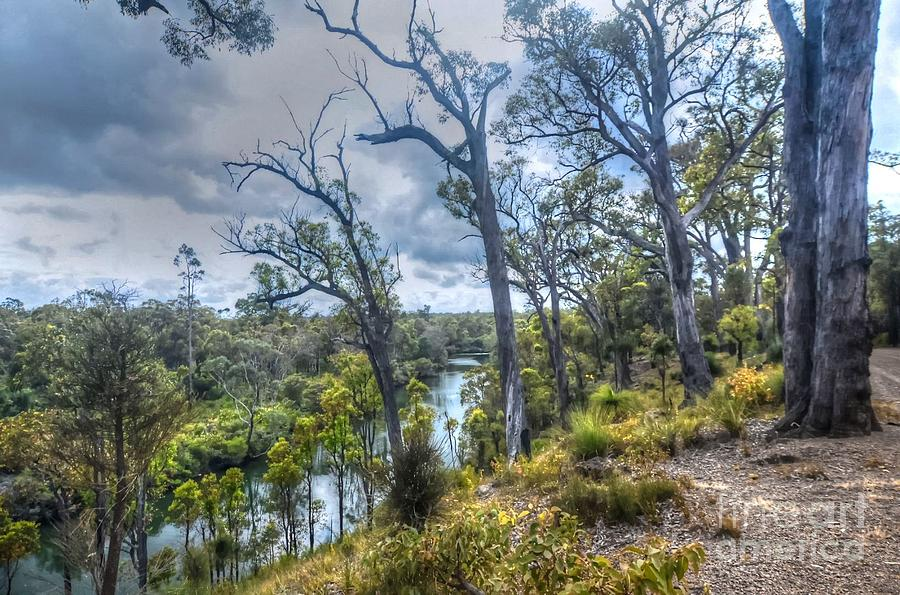River Photograph - River Bush Track by Hans Peter Goepel