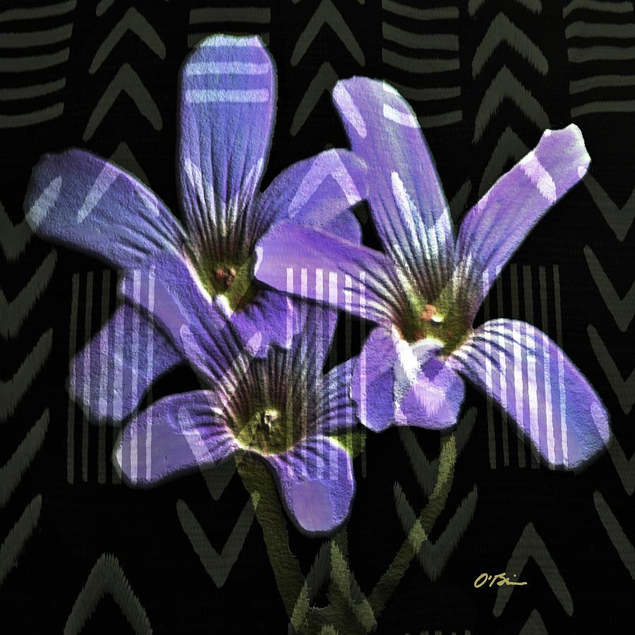 Wildflowers Digital Art - Wild Wildflowers by Claudia OBrien