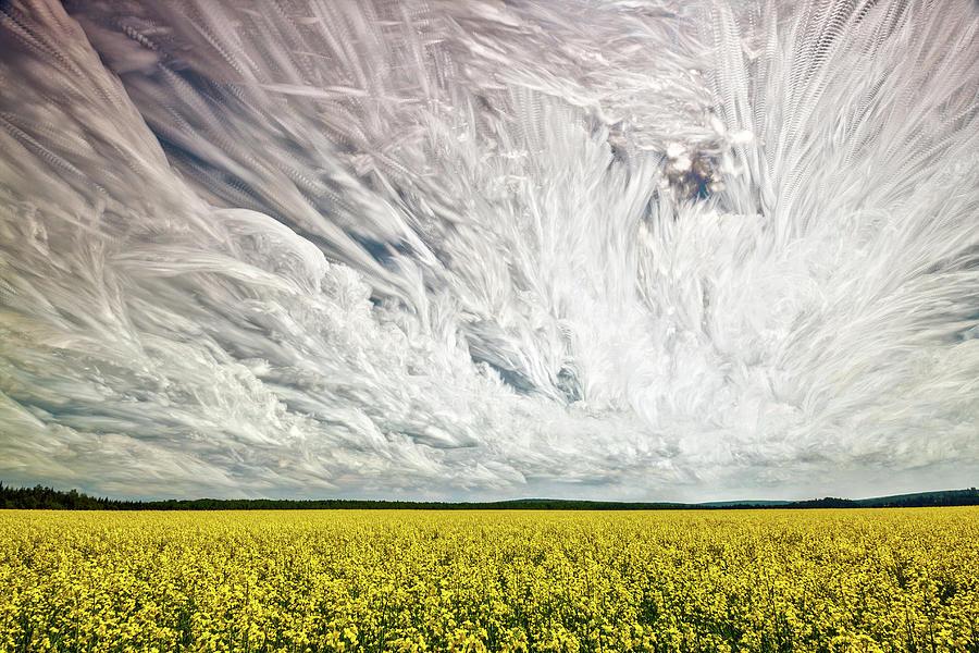 Matt Molloy Photograph - Wild Winds by Matt Molloy