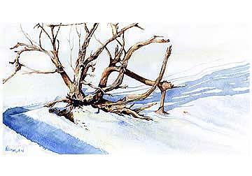 Wild Wood Painting by Kris Killman