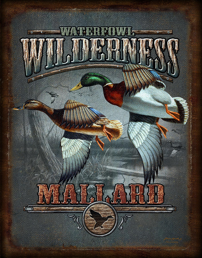 Bruce Miller Painting - Wilderness Mallard by JQ Licensing