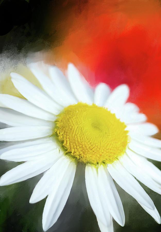 Landscape Photograph - Wildflower by Garvin Hunter
