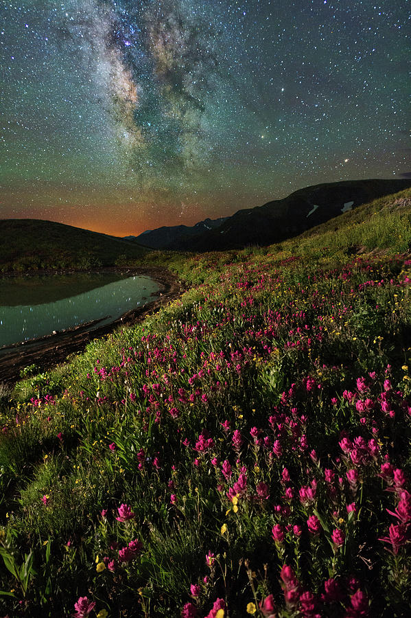 Wildflower Milky Way Reflection Photograph