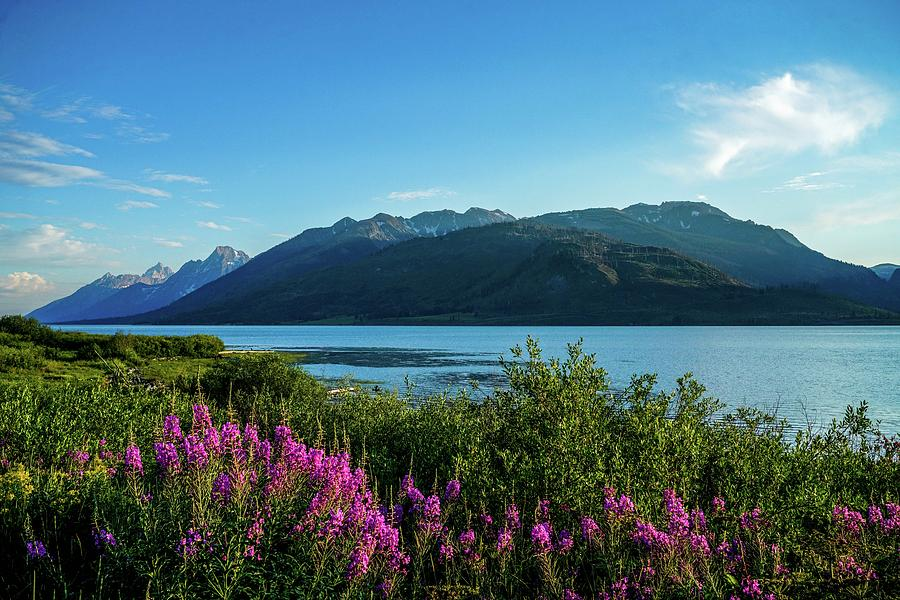 Lake Photograph - Wildflowers On The Edge by Ric Schafer