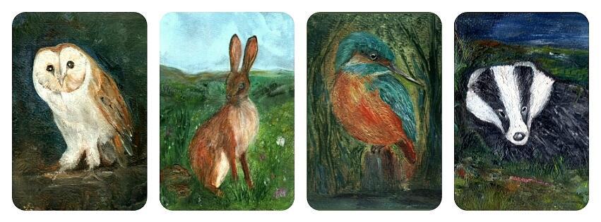 Barn Owl Painting - wildlife Quartet by Carol Rowland