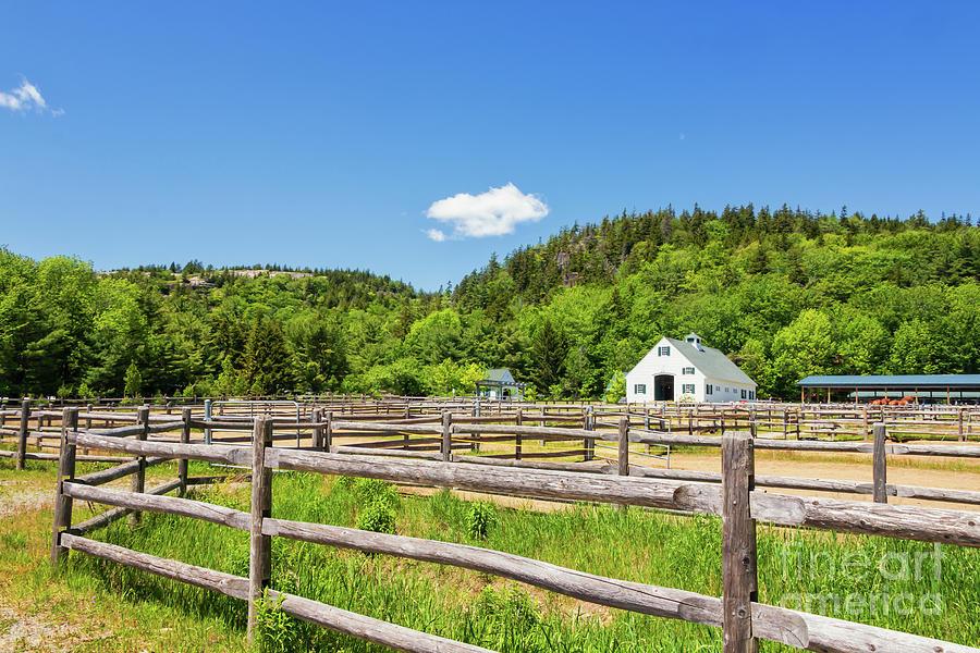 Wildwood Farm Photograph