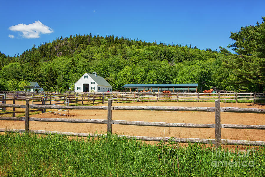 Wildwood Stables Of Acadia Photograph