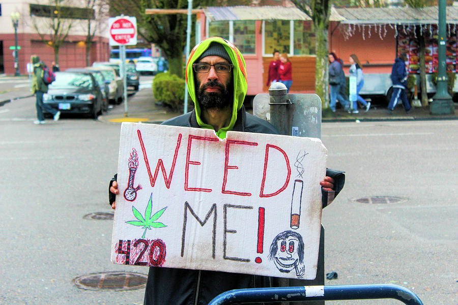 Portland Photograph - Will Work 4 Weed by Tyquill Williams