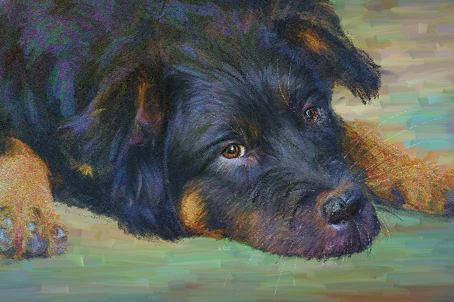 Angela A Stanton Painting - Will You Play With Me? by Angela Stanton