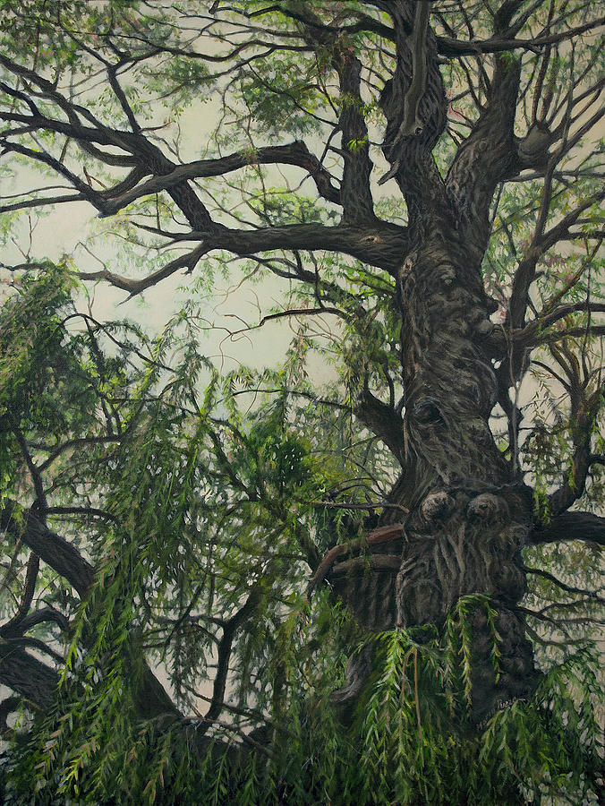 Willow Painting - Willow Tree by Maria Rizzo
