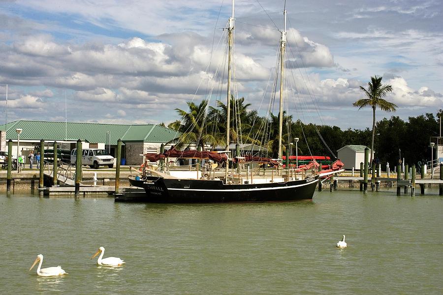 Sailboat Photograph - Wilndfall In Flamingo by Rodney Cammauf