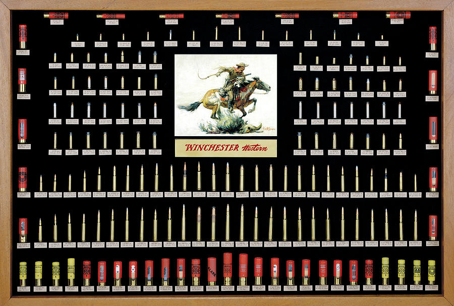 Cartridges Photograph - Winchester Ammunition Cartridge Board by Unknown
