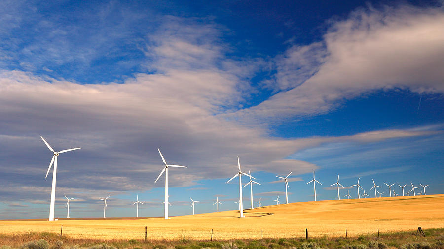 Wind Farm Against the Sky by Todd Kreuter