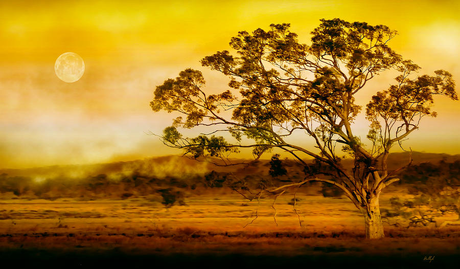 Landscapes Photograph - Wind Of Change by Holly Kempe