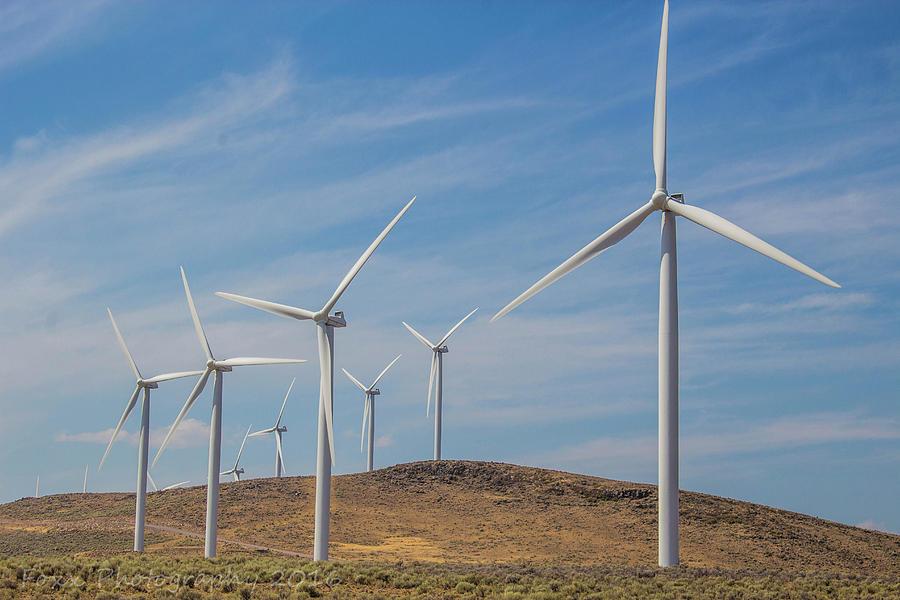 Wind Power Photograph