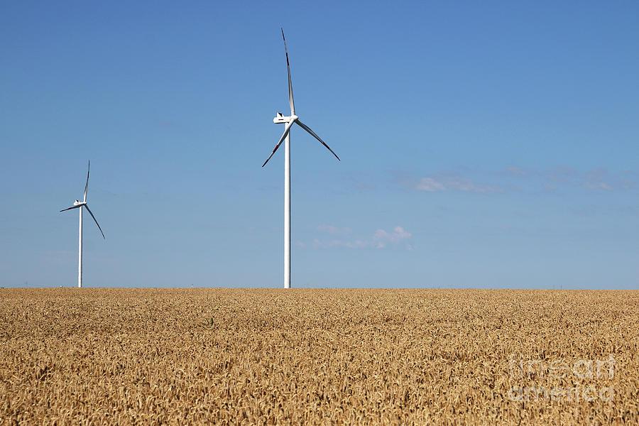 Wind Photograph - Wind Turbines On Wheat Field Summer Season by Goce Risteski