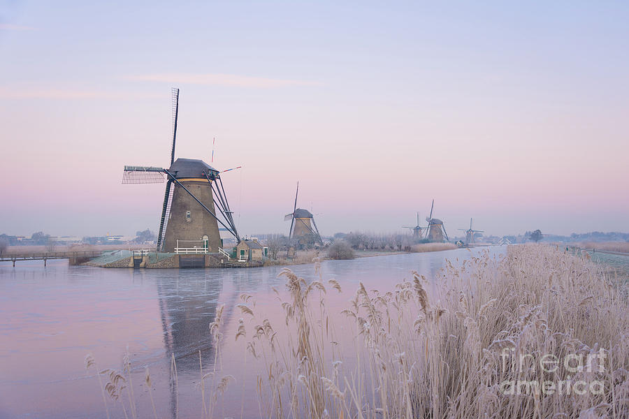 Windmills Photograph - Windmills in the Netherlands in the soft sunrise light in winter by IPics Photography