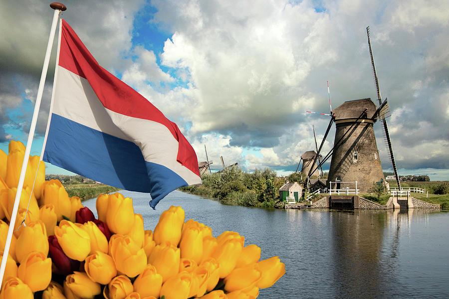 Windmills of Kinderdijk the Netherlands by Adriana Zoon