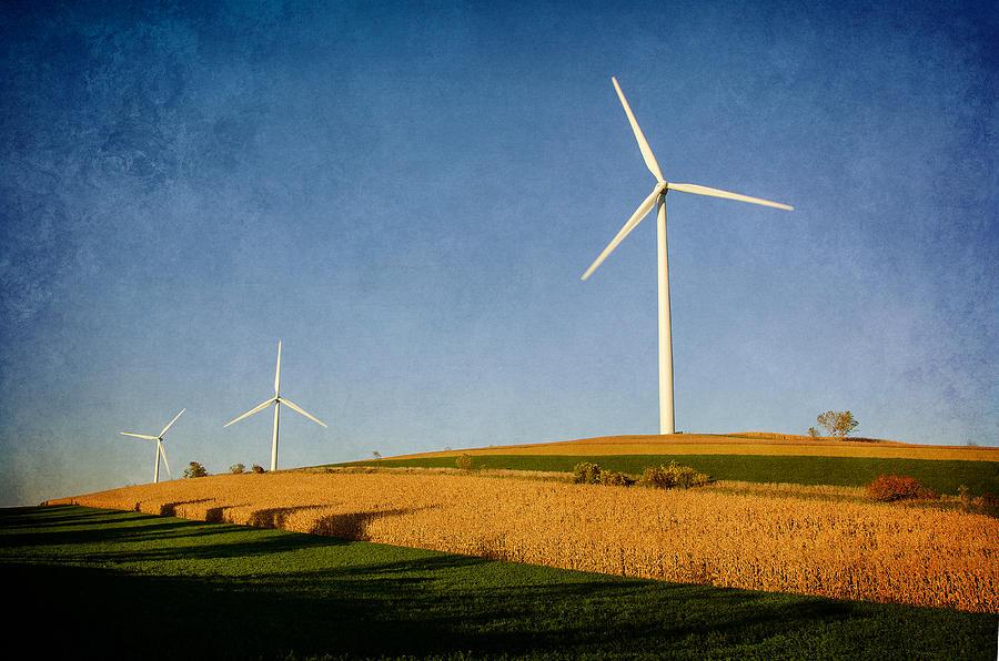 Windmills Photograph