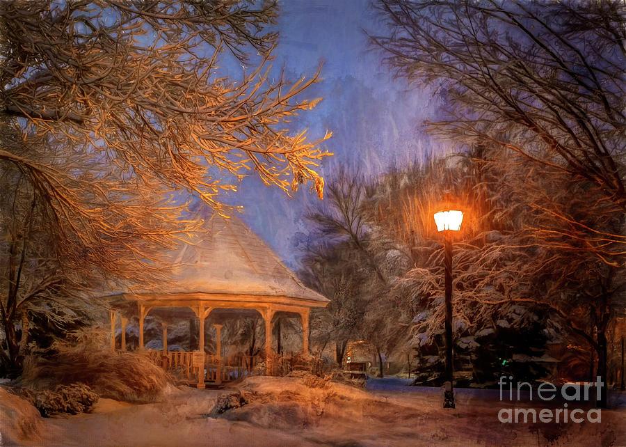 Windom Park Snowstorm by Al  Mueller