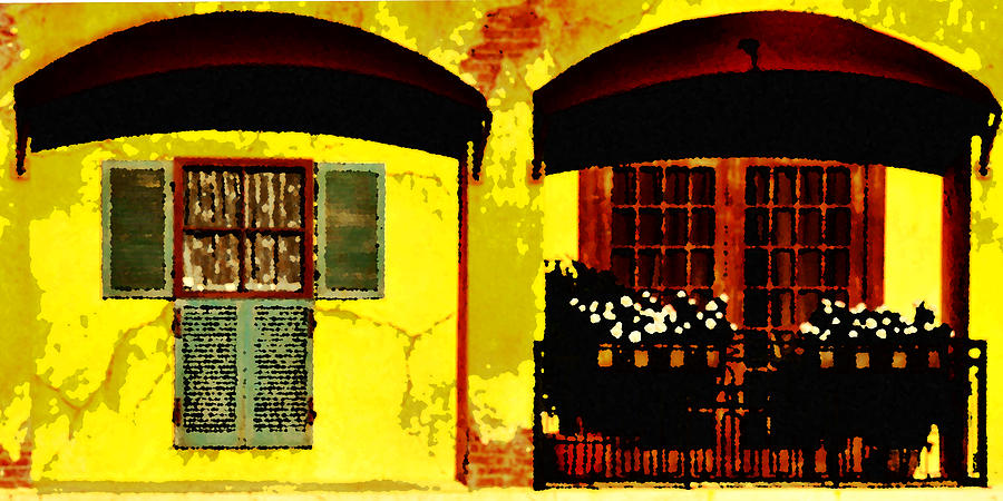 Windows Photograph - Window And Doors by Lyle  Huisken