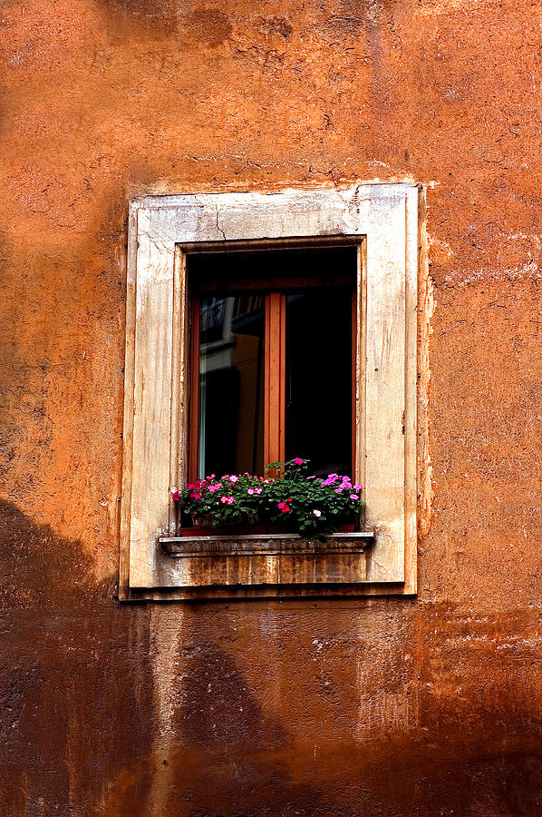 Italy Photograph - Window And Flowers Rome  by Xavier Cardell