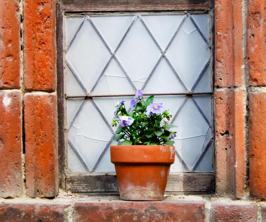 Window Photograph - Window And Pots I by Carl Jackson
