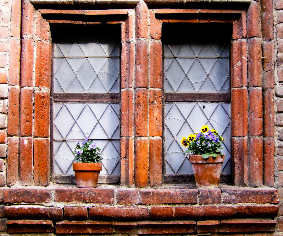 Window Photograph - Window And Pots II by Carl Jackson