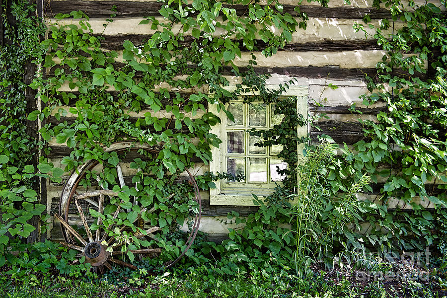 Window And Wagon Wheel At Abandon Building Photograph