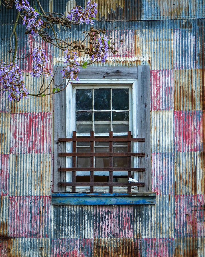 Window and Wysteria by Cyndi Goetcheus Sarfan