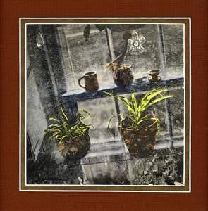 Window Box Tint Print by Jim Marzano