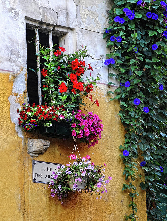 Flowers Photograph   Window Garden In Arles France By Dave Mills